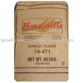 malted barley flour products,India malted barley flour