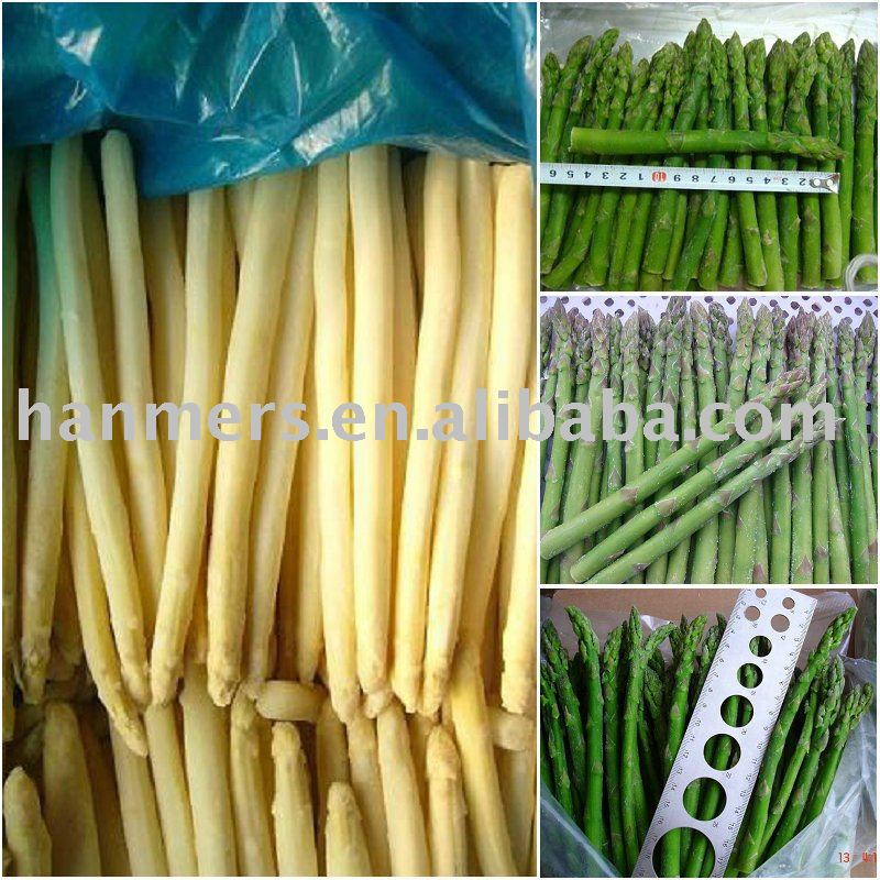 frozen white asparagus products,China frozen white asparagus supplier