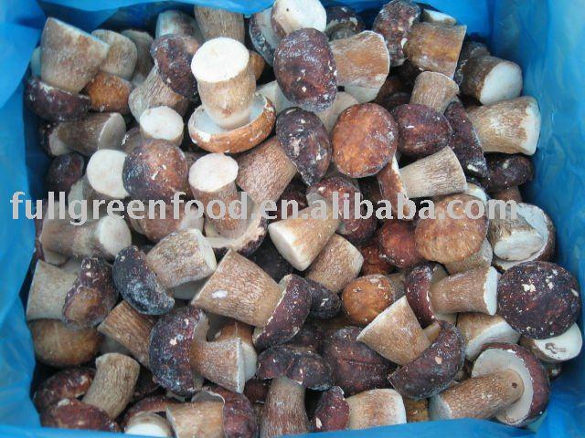 Top Quality Frozen Mushroom (Boletus Edulis)
