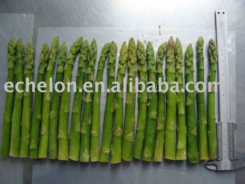 frozen asparagus products,China frozen asparagus supplier