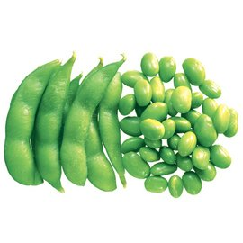 new Crop Frozen soybean kernels