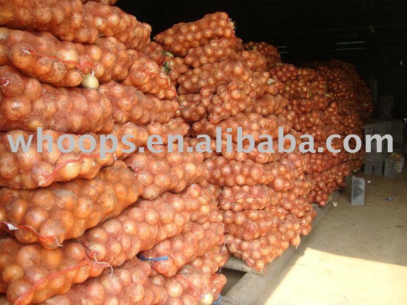 Новый Урожай Свежего Китайского Лука