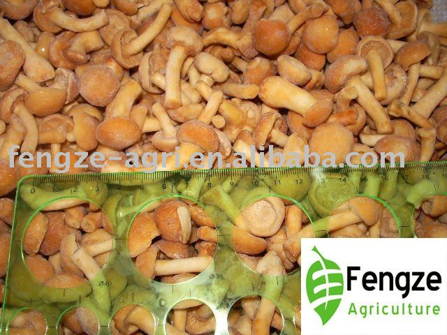 2010 New Crop Individual Quick Frozen nameko mushrooms