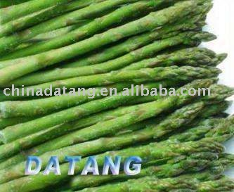 frozen green asparagus  IQF green asparagus
