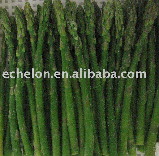 green asparagus products,China i q f green asparagus supplier