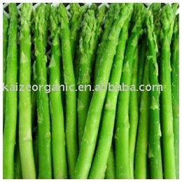 Shandong new crop frozen asparagus