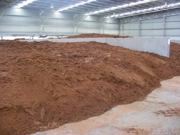 sorghum grain for cattle feed , White  garlic  and  oil