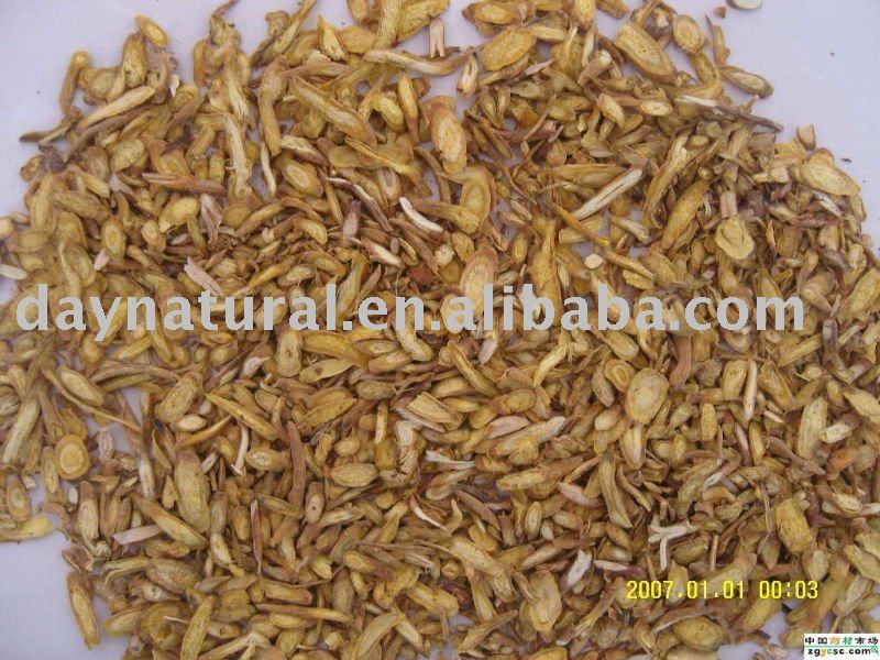 Scutellariae Radix Extract