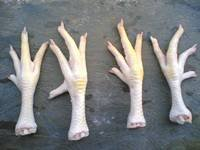 QUALITY CHICKEN FEET READY FOR SALE