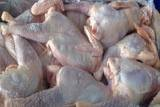 frozen chicken in stoke for sale