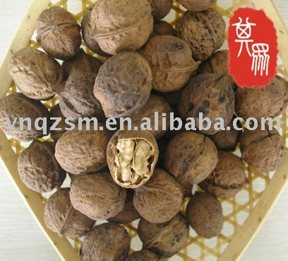 walnut ,walnut in shell ,normal quality walnut
