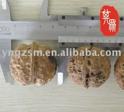 yunnan walnut ,high quality walnut