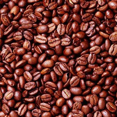 Indian Coffee Bean Robusta