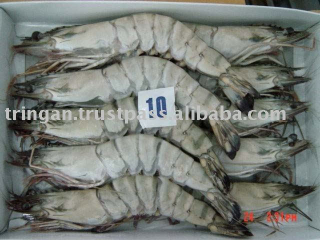 HOSO black tiger shrimp