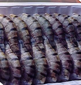 Freshwater Shrimp (Scampi)