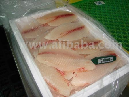 Fresh Tilapia Fillets And Whole Fish