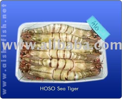 HOSO SEA TIGER SHRIMPS