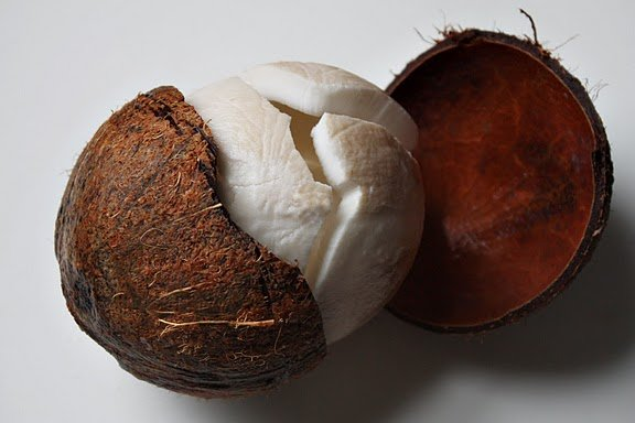 Husked Matured Coconuts