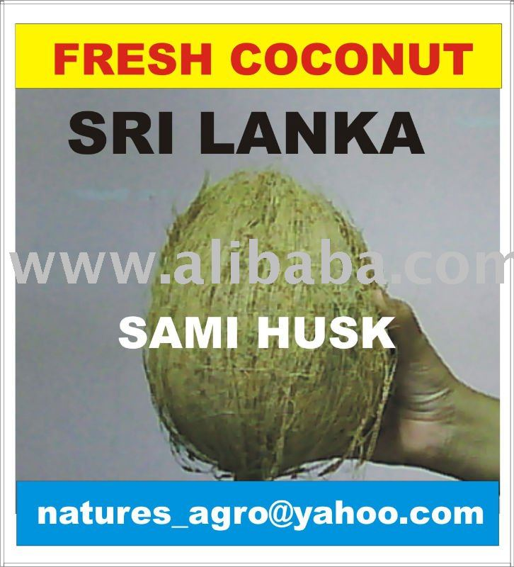 FRESH COCONUT from SRI LANKA