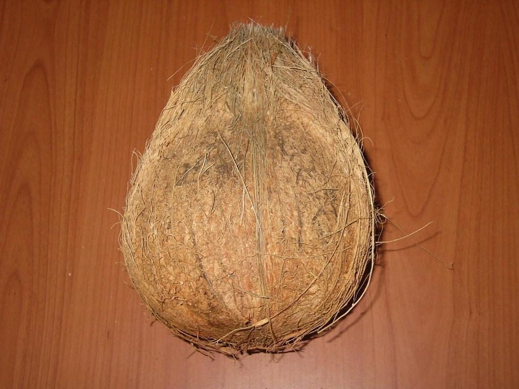Semi husk Fresh Coconut