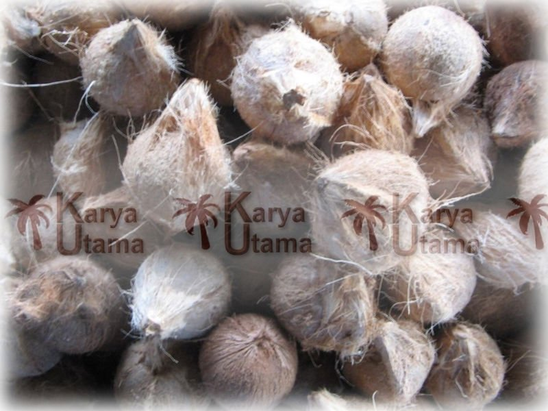 Husked-Mature Coconut