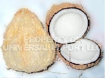 Fresh Dehusk Coconut