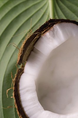 Husked Fresh Mature Coconuts