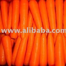Fesh Carrot