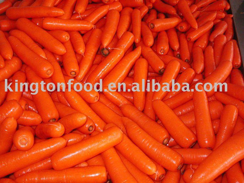 новый урожай 2010 года Свежая морковь