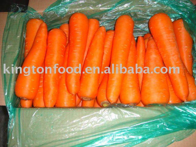 Китай 2011 морковь