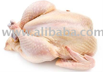 GRADE A PROCESSED CHICKEN FAT OIL FOR SELL