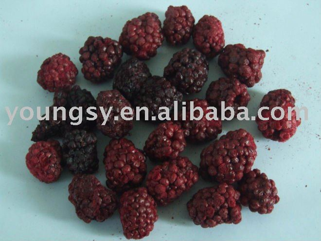 freeze dried blackberry