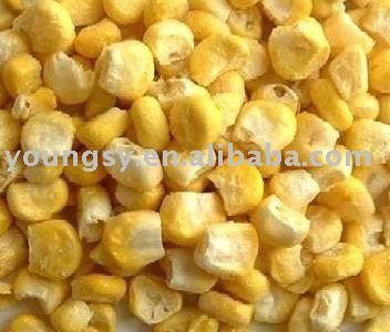 freeze dried sweet corn/FD sweet corn