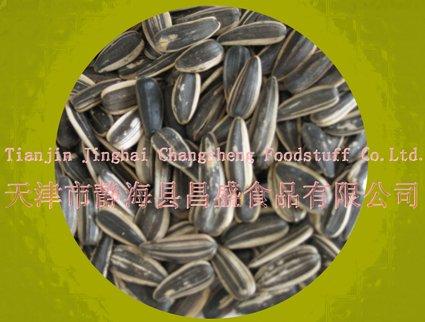 Sunflower Seed  (raw/ snack food )