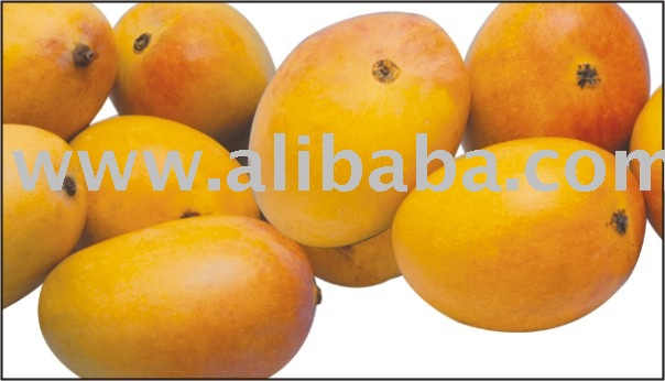 cold dried mango slice