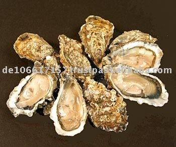 Oyster Shell Powder