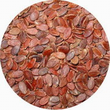 red watermelon seeds in shell