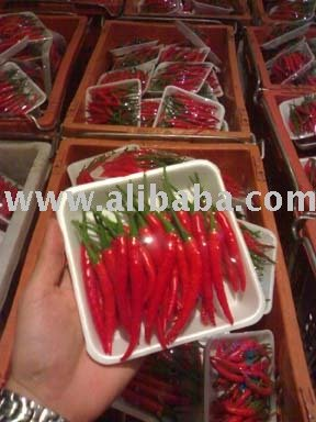 Fresh Chilli Red pack 100g