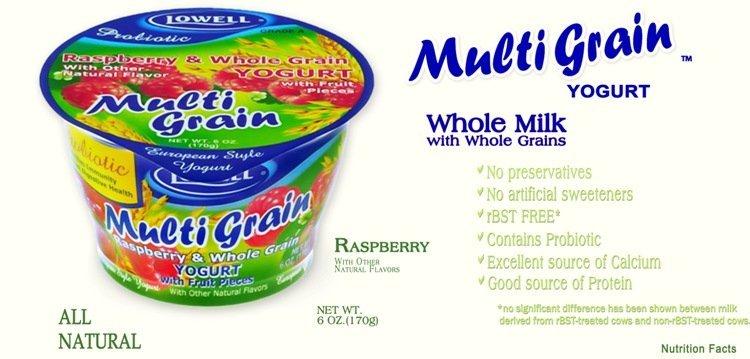 European Classic Yogurt Whole Milk Products United States