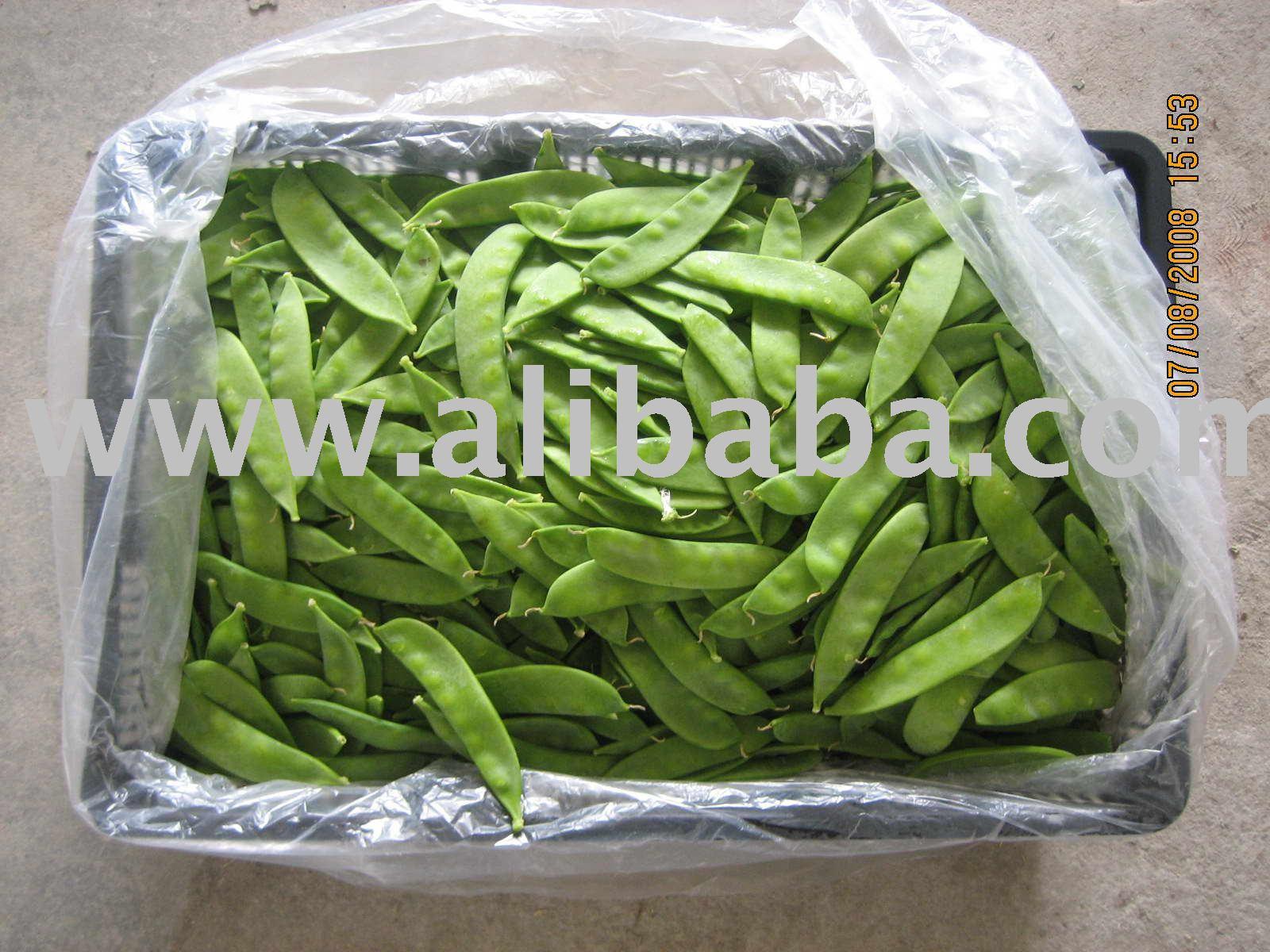 Fresh Snow pea