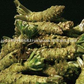 how to make fresh wasabi