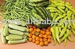 All type of vegetables,Indian spices,