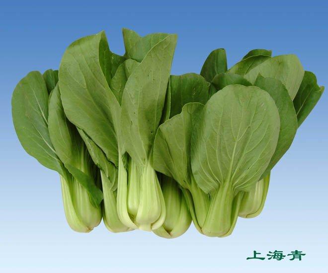 Organic Shanghai Pak Choi