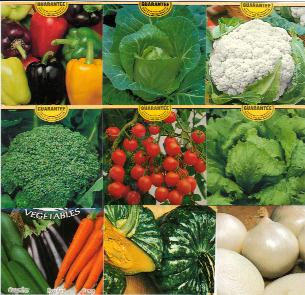 Vegetables From Australia