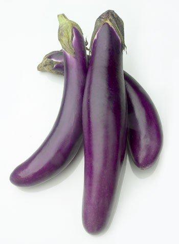 fresh vegetables: EGGPLANT products,Singapore fresh