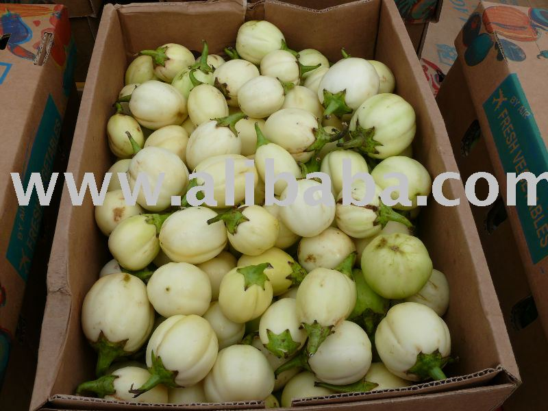 Garden Egg,Vegetable products,Ghana Garden Egg,Vegetable supplier