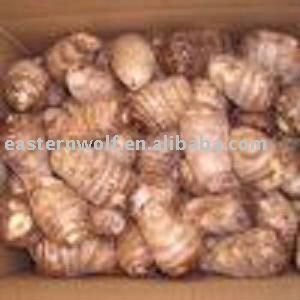taro plastic Taro is the root of the taro plant, which is grown in semi-tropical and tropical climates all over the world taro root is inedible raw and must be cooked thoroughly to leach out the calcium oxalate (associated with gout and kidney stones), preferably with a pinch of baking soda.