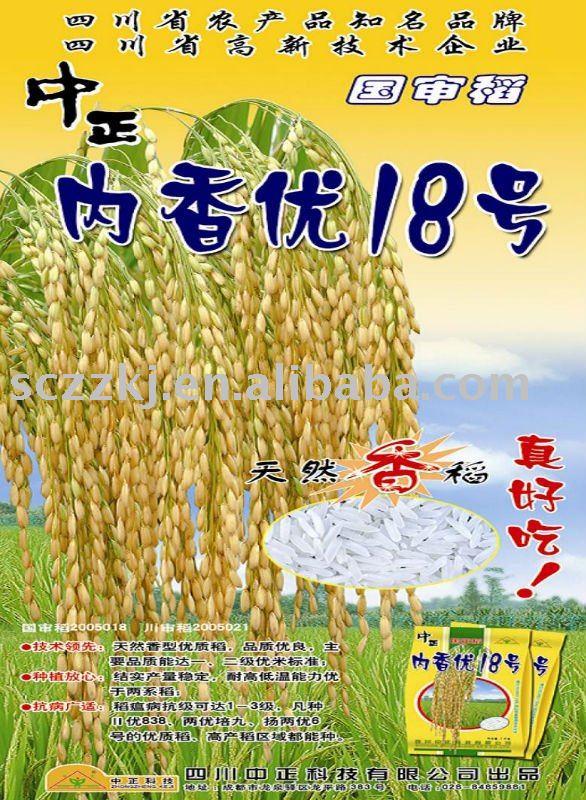 hybrid fragrant  rice seed