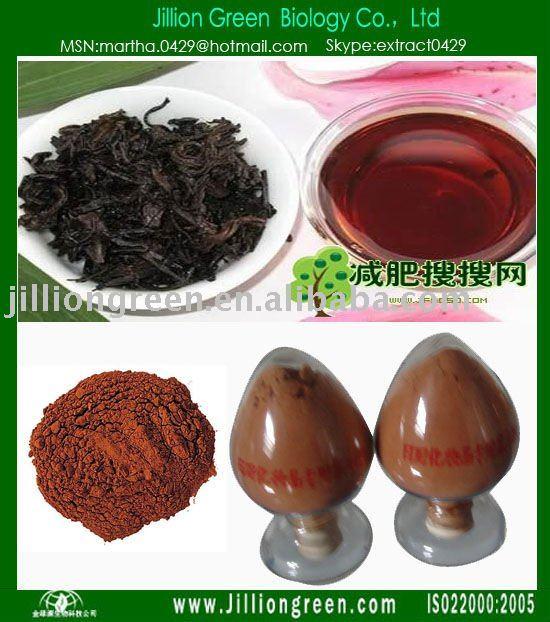 Instant Tea Powder/Milk Tea Powder