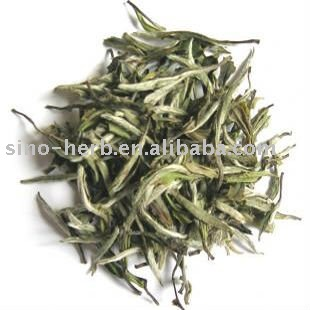 Chinese Organic White Tea--Silver Needle tea ,Anti-aging